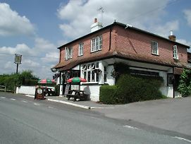 The Mucky Duck Inn photos Room