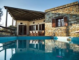 2Ag252-House With A Pool In Andros photos Exterior