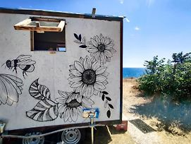 The Smallest House On Wheels, Basic Accommodation photos Exterior