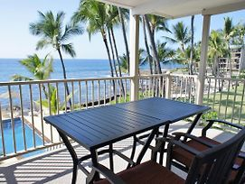 Fantastic Ocean View Watch For Dolphins Affordable photos Exterior