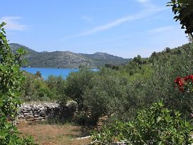 Secluded Fisherman'S Cottage Cove Jaz - Telascica, Dugi Otok - 876 photos Room