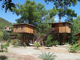 Rahmi'S Tree Houses photos Exterior