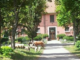 Country House Villa Delle Rose Agriturismo photos Exterior