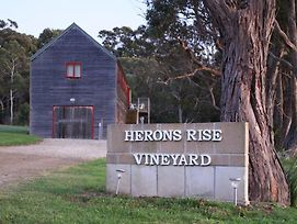 Herons Rise Vineyard Accommodation photos Room