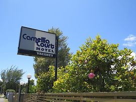 Camellia Court Family Motel photos Exterior
