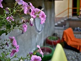 Backpackers Hostel photos Exterior