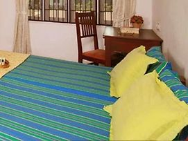 Orion Holiday Homestay photos Room