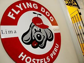 Flying Dog Backpackers Hostel photos Exterior