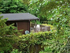 Mockerkin Tarn Luxury Log Cabin photos Exterior