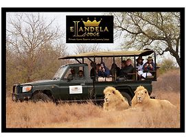 Elandela Private Game Reserve And Luxury Lodge photos Room