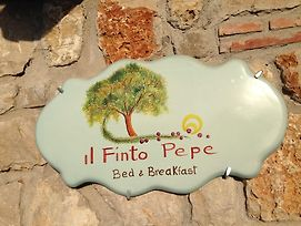 Il Finto Pepe B&B photos Exterior