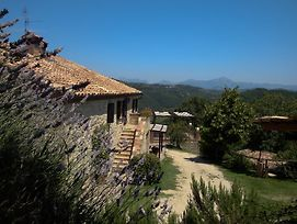 Farm Stay Agriturismo Semidimela photos Exterior