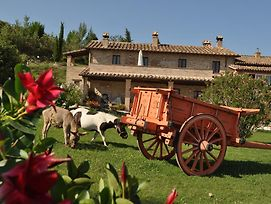 Farm Stay Il Carro Del Colle photos Exterior