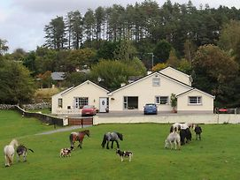 Muckross Riding Stables photos Exterior