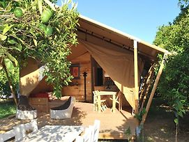 Campo Portakal Eco Glamping Cirali photos Room