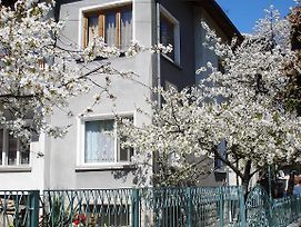 Guest House Minkovi photos Exterior
