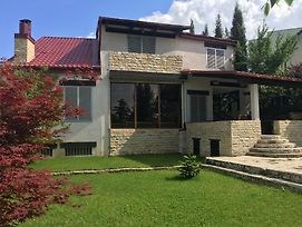 Tbilisi Tskneti Mountain Villa photos Exterior