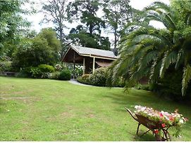 Australian Home Away @ Eltham Venn Cottage photos Exterior