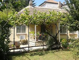 The House In Greenery photos Exterior