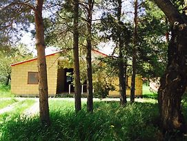 Sevan Lake Cottage In Lavanda City photos Exterior