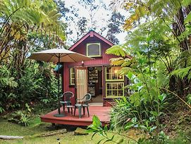 Ferny Hollow: Romantic Rainforest Cottage photos Exterior