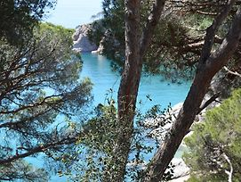 Cala Llevado Five photos Exterior