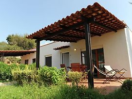 Charming Holiday Home In Palinuro With Private Swimming Pool photos Exterior