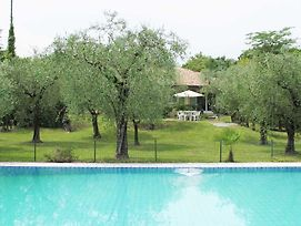 Villa Clara Large Villa With Private Pool Steps From The Beach photos Exterior