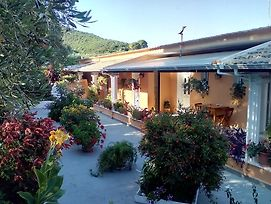Olive Grove Studios photos Exterior