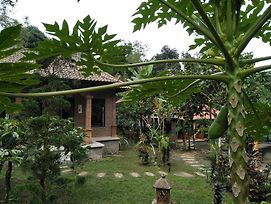Dina Home Stay photos Exterior