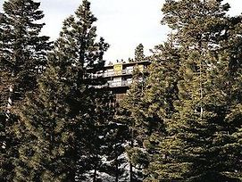 Royal Aloha Tahoe/Ravc photos Exterior