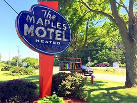 Maples Motel photos Exterior