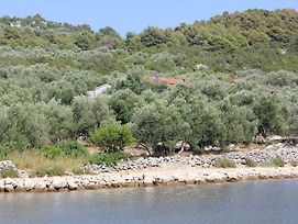 Seaside Secluded Apartments Cove Magrovica - Telascica, Dugi Otok - 8139 photos Exterior