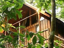 Bayrams Tree Houses photos Exterior