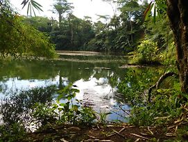 Colo-I-Suva Rainforest Eco Resort photos Exterior