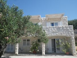 Apartments And Rooms With Parking Space Hvar - 13296 photos Exterior