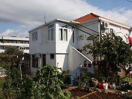 Apartments With A Parking Space Dubrovnik - 4672 photos Exterior