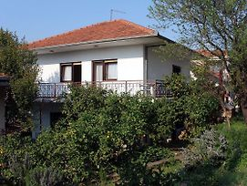 Apartments With A Parking Space Seget Vranjica Trogir 4883 photos Exterior