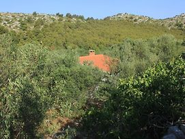 Secluded Fisherman'S Cottage Cove Magrovica - Telascica, Dugi Otok - 8122 photos Exterior
