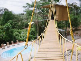 Tarzan Jungle Home Honeymoon Treehouse photos Exterior