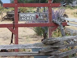 No Mow Acres photos Exterior