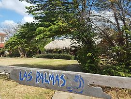 Las Palmas Surf Lodge photos Exterior