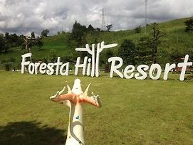 Foresta Hill Resort photos Exterior