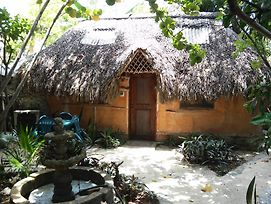 Casitas Kinsol photos Room