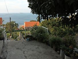 Apartments With A Parking Space Plat Dubrovnik 4776 photos Exterior