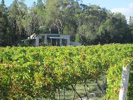 Just Red Wines Vineyard Cabins photos Exterior