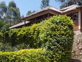 Bwindi Forest Lodge photos Exterior