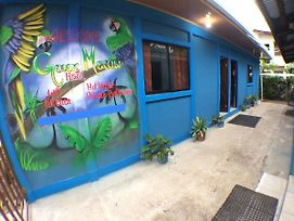 Green Macaw Hostel photos Exterior