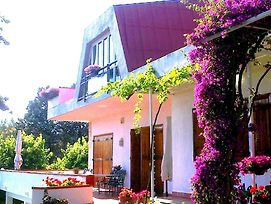 B&B Aloisio photos Exterior