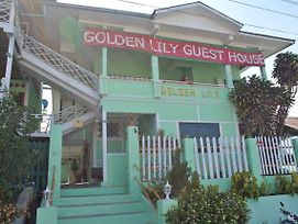 Golden Lily Guest House photos Exterior